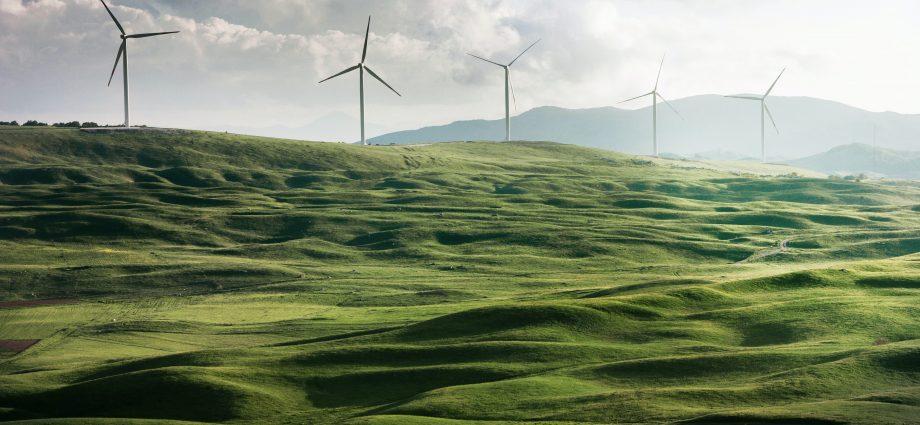 Champ d'éoliennes